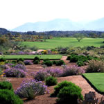 Vistoso Golf Club